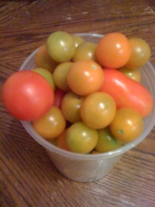 Cup-o-tomatoes